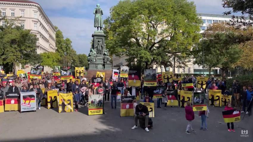 VIDEO: Manifestație de solidaritate cu familia Furdui la Viena